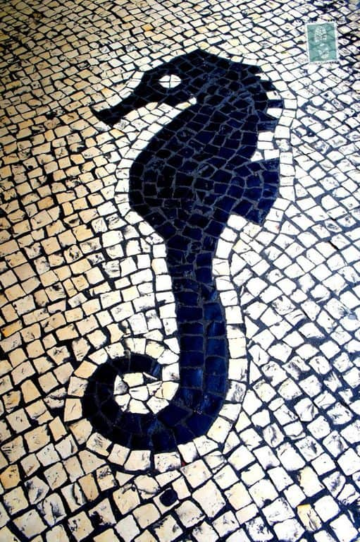 Portuguese style pavement in Macau - Seahorse
