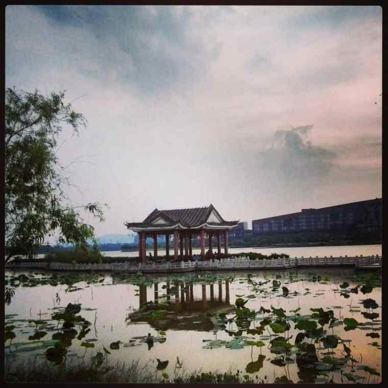 Songshan Lake scenery