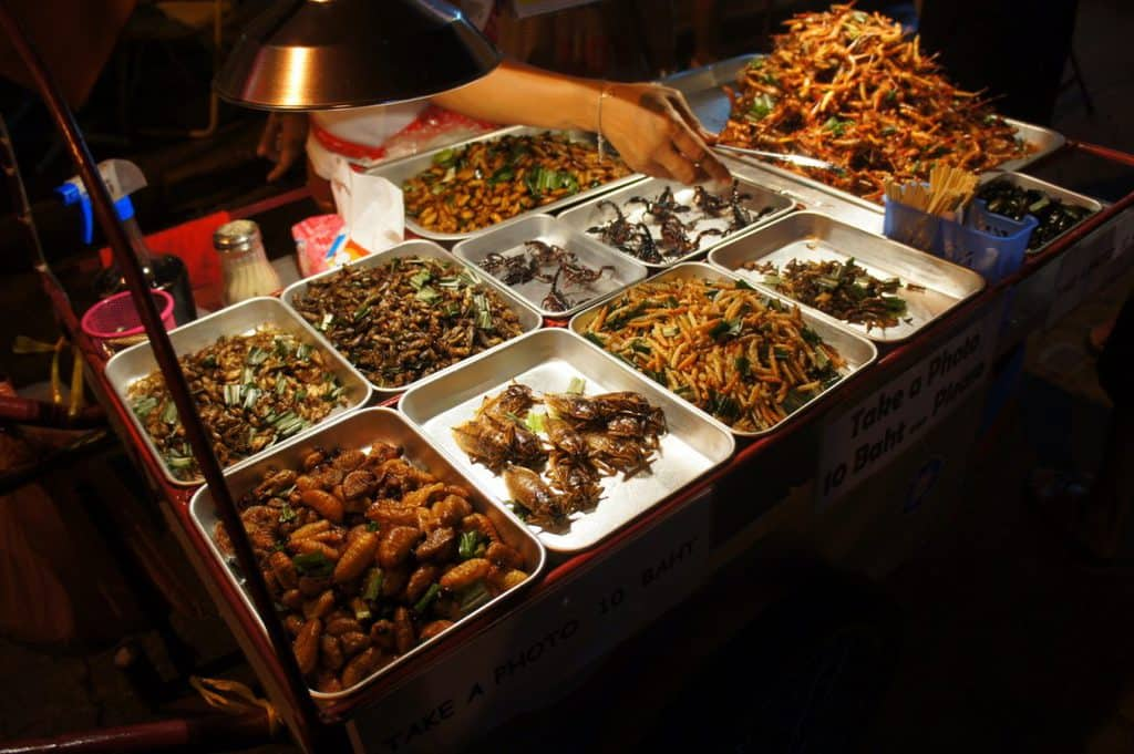 Scorpions and bugs sold in Bangkok