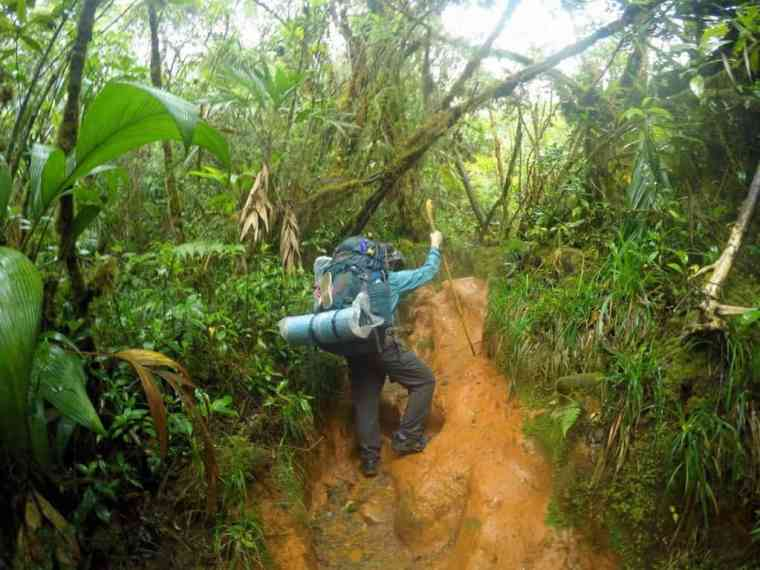 Trekking into the jungles around Mt Roraima, the world's highest table top mountain