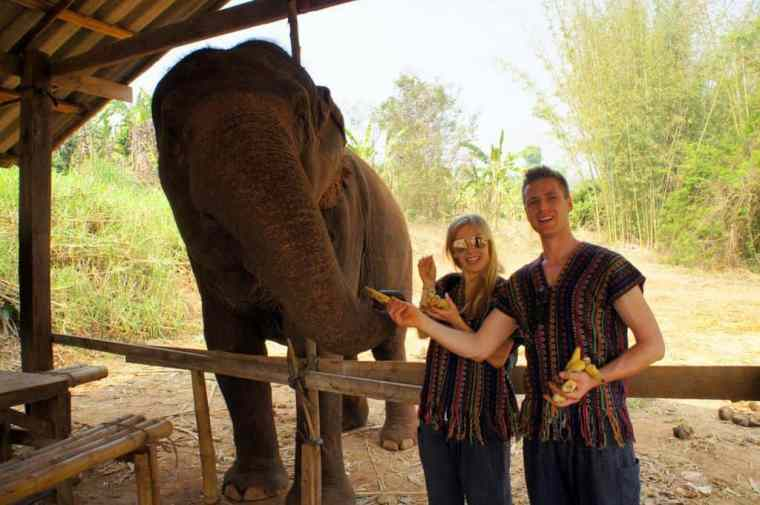 Feeding the elephants in Thailand – an amazing experience