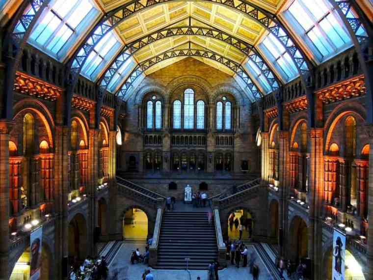 Natural History Museum London from the inside