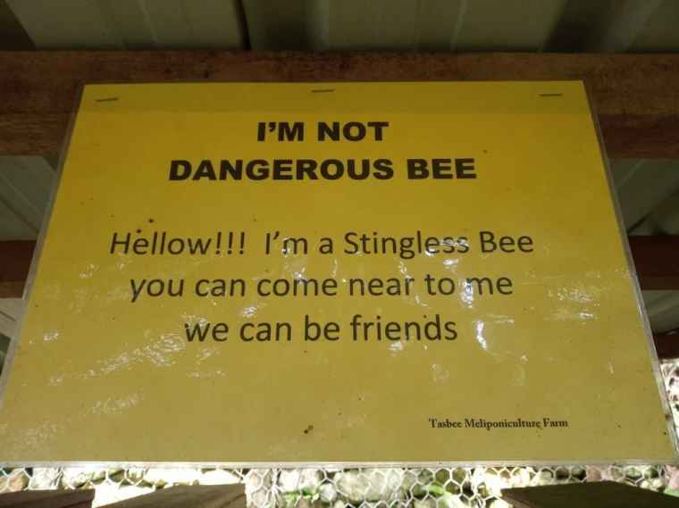 A sign about stingless bees in Brunei