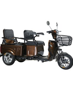 Electric Trikes