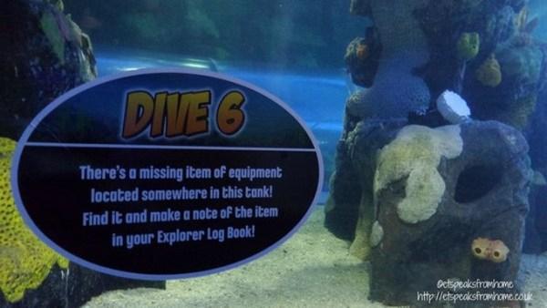 sea life centre dive
