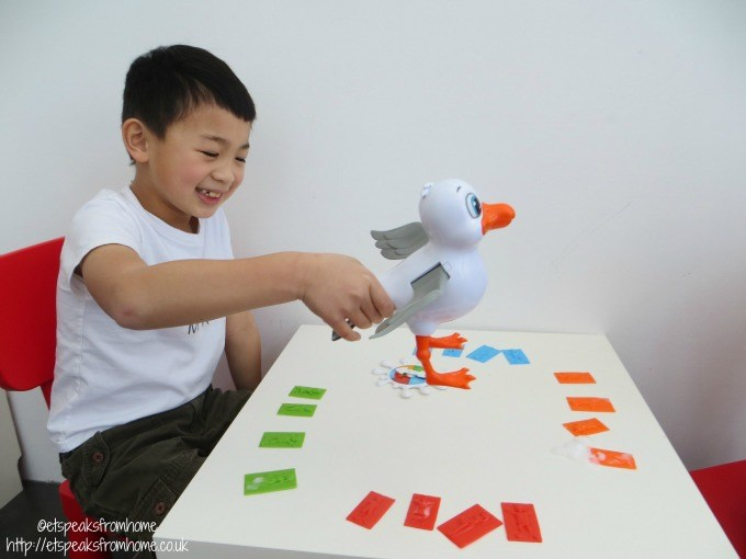 seagull splat play