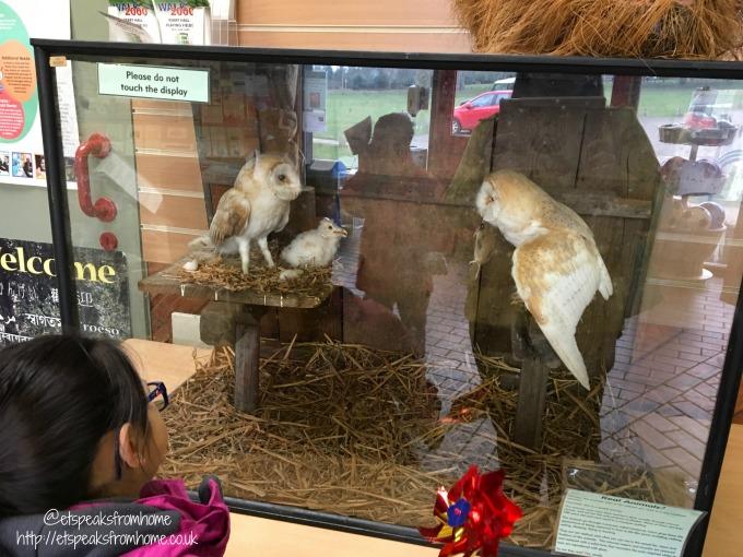 visit to sutton park stuffed animals