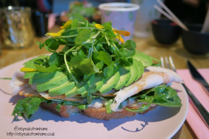 foods to try in amsterdam the avocado show cat sandwich