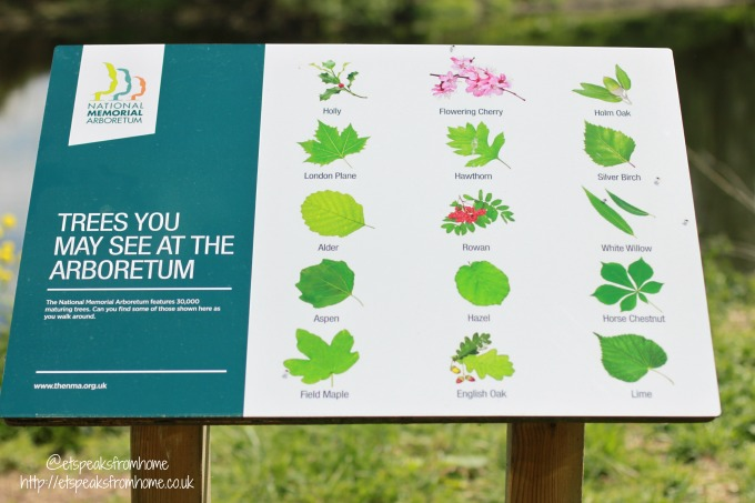 Explore Lichfield and surrounding areas National Memorial Arboretum tree