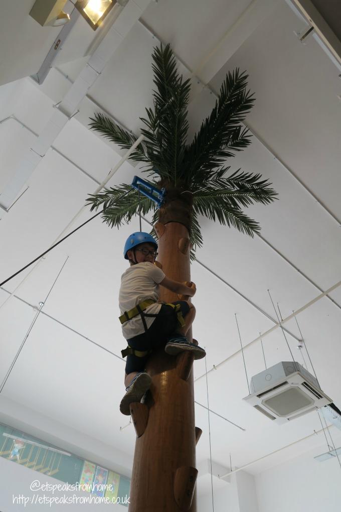 Singapore Let 'em Play tree wall