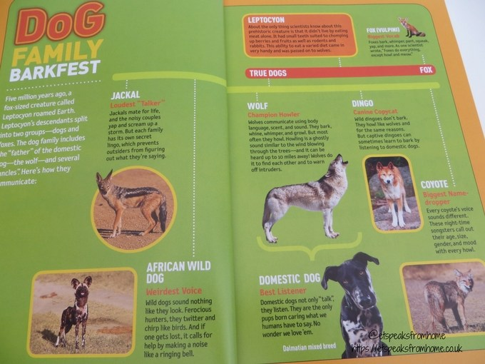 National Geographic Kids How to Speak dog