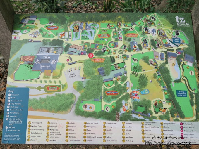 The Great Brick Safari at Twycross Zoo map