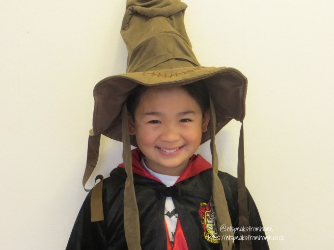 Harry Potter Sorting Hat mr k