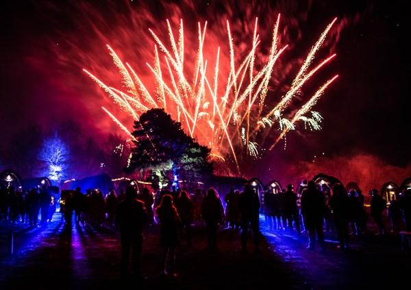 Alton Towers Resort Stargazing Pods firework