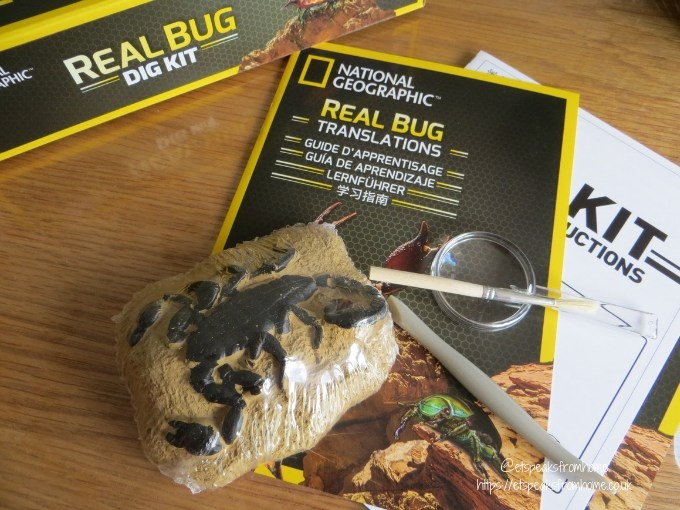 National Geographic real bug Dig Kit Review