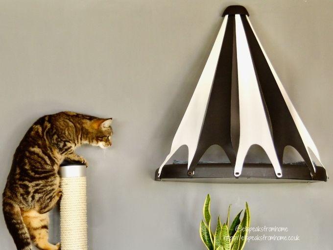 Catipilla Luxury Modern Cat Furniture cat Scratchers
