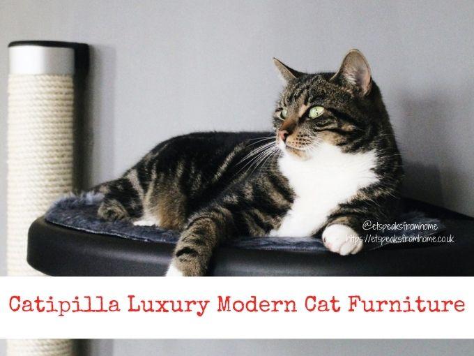 Catipilla Luxury Modern Cat Furniture