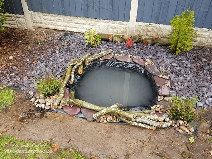 how to build nature wildlife pond filled