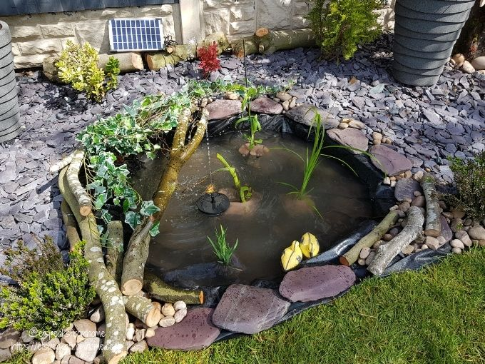 how to build small nature wildlife pond in garden