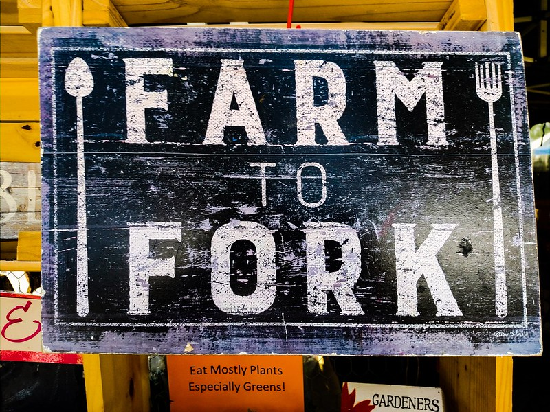 The Farm to Fork Strategy. Cleaning up the EU's agri food system within and beyond