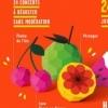 affiche Festival Printemps De Perouges 2014