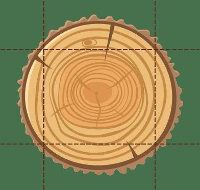 עץ גושני