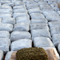 Macedonian customs officers pose for the media with hundreds of packages of marijuana which were seized at a border crossing, in Skopje, Macedonia, Tuesday, Nov. 27, 2012. Macedonian custom officers seized over 500 kilograms (1100 pounds) of marijuana at a Macedonian border crossing with neighboring Albania and detained the truck driver, police said. The marijuana, which is believed to have originated from Albania and destined for distribution in western Europe, has an estimated euro 3 million (US$ 3.8 million) street value. (AP Photo/Boris Grdanoski)