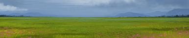 Grasslands terrain