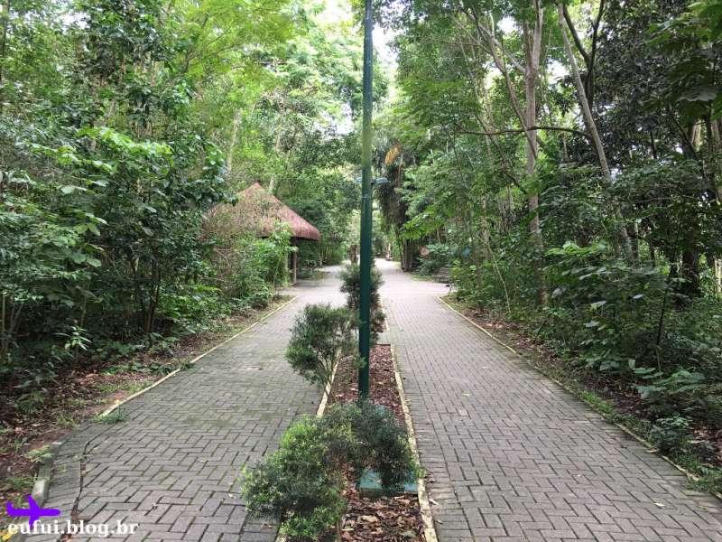 Parque Ilha Grande em Guararema - Trilhas