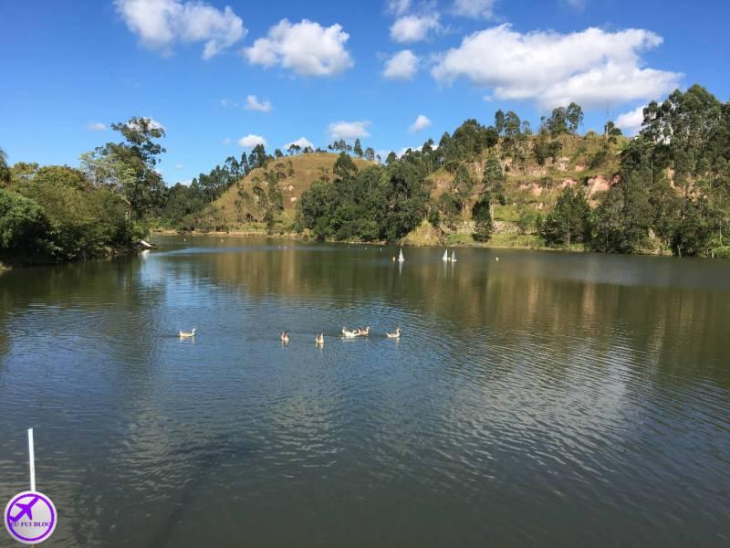 Lago Francisco Rizzo em Embu das Artes - São Paulo
