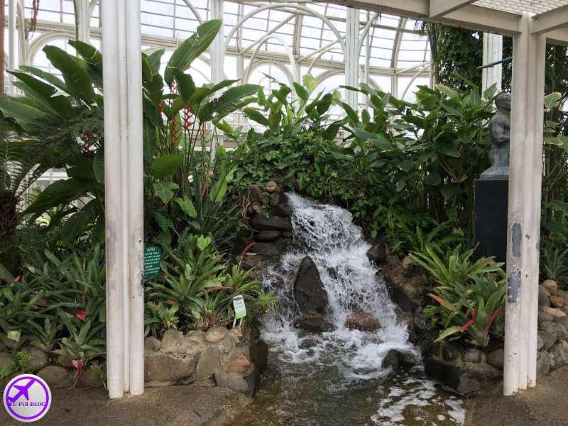 Chafariz dentro da estufa do Jardim Botânico de Curitiba - Paraná