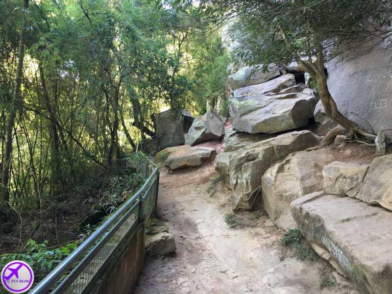 Trilha para Pedra Partida na Gruta do Monge - Parque Nacional do Monge - Lapa - Paraná