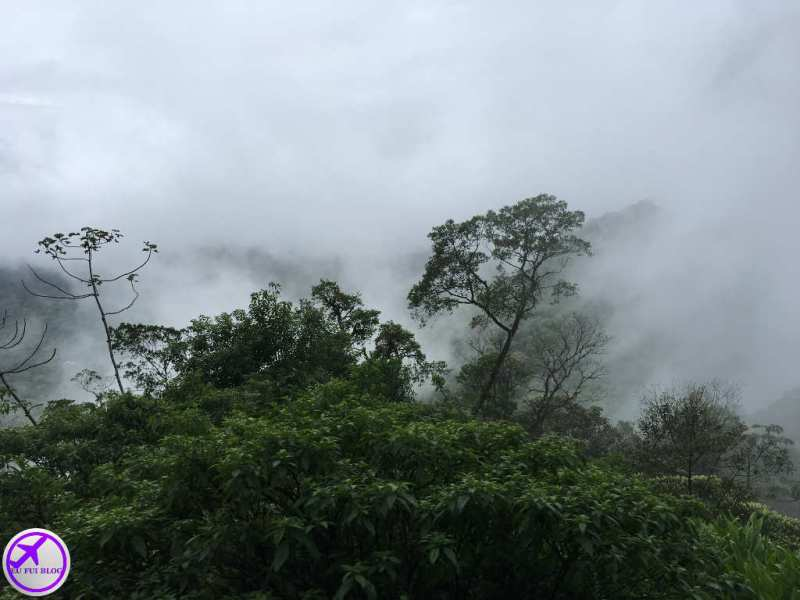 Neblina durante o passeio do Trem para Morretes e Antonina em Curitiba - Paraná