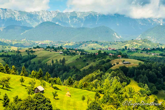 Peisaj de vara din zona Bran-Moeciu