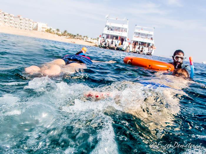 Snorkeling in Marea Rosie, vedere de deasupra apei