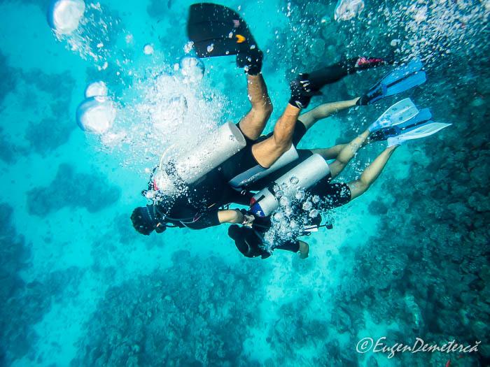 Scubadiving in Marea Rosie