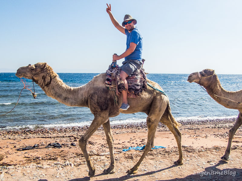 PC310873 - Egipt, destinaţia pentru vacanţe exotice la super-preţuri!