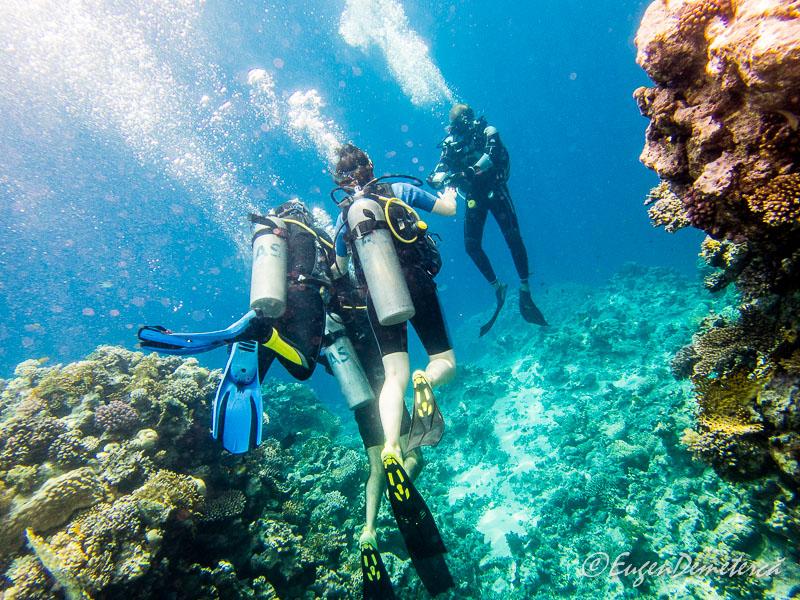 Scuba Egipt - Egipt, destinaţia pentru vacanţe exotice la super-preţuri!
