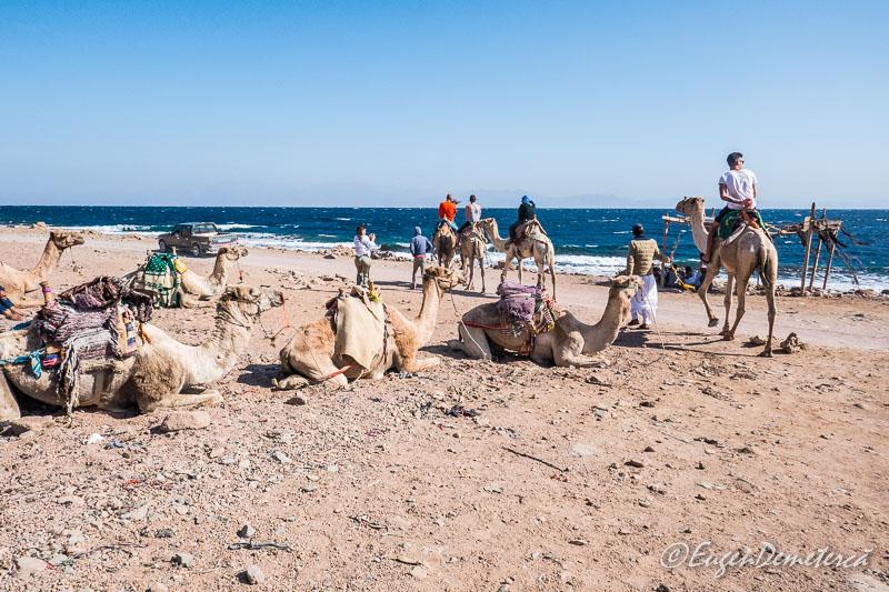 camile BLue Hole - Egipt, destinaţia pentru vacanţe exotice la super-preţuri!