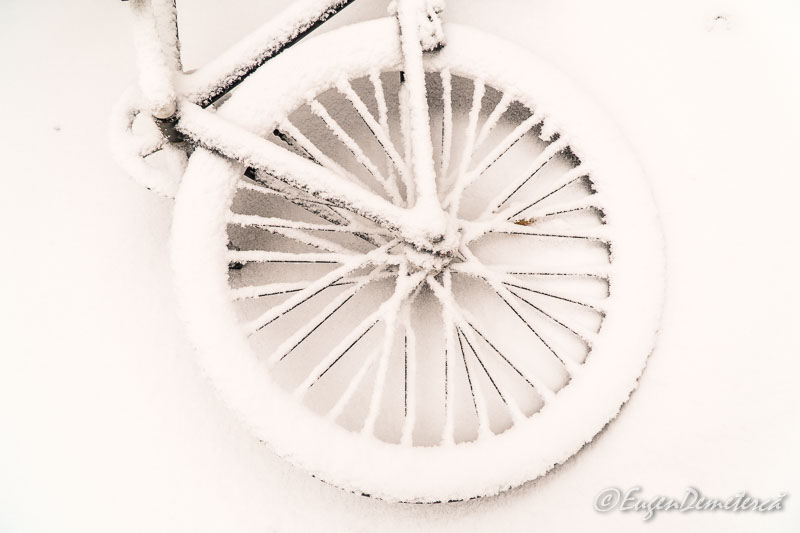 Bicla ninsa - Copenhaga, printre nămeți primăvărateci