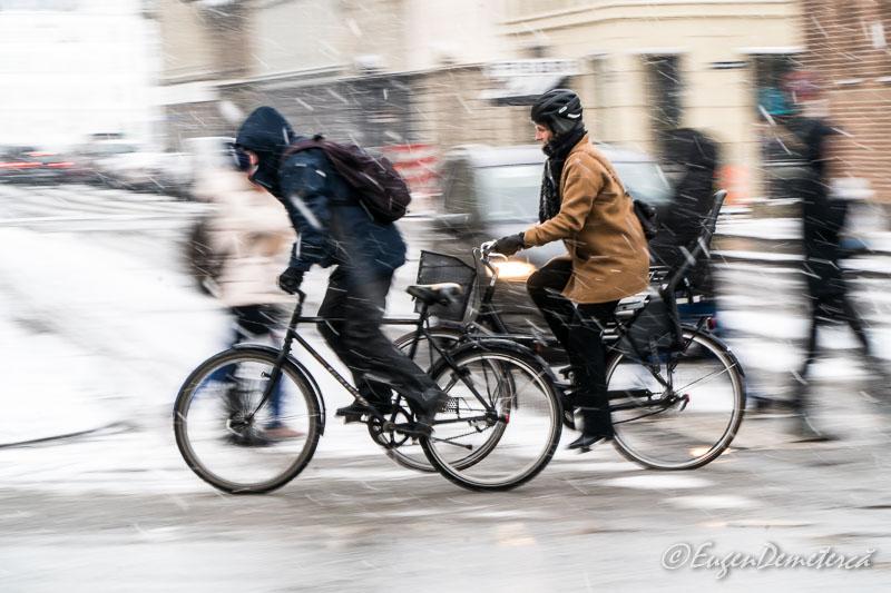 DSC9755 - Copenhaga, printre nămeți primăvărateci