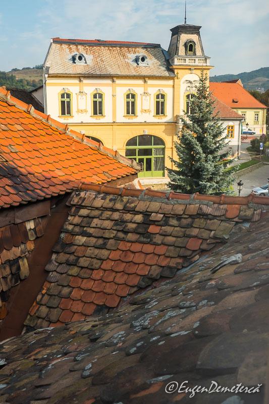 1160481 - Mediaş: perla ascunsă a colinelor Transilvaniei