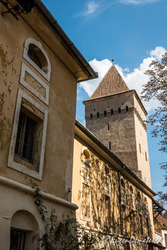 1160725 - Mediaş: perla ascunsă a colinelor Transilvaniei