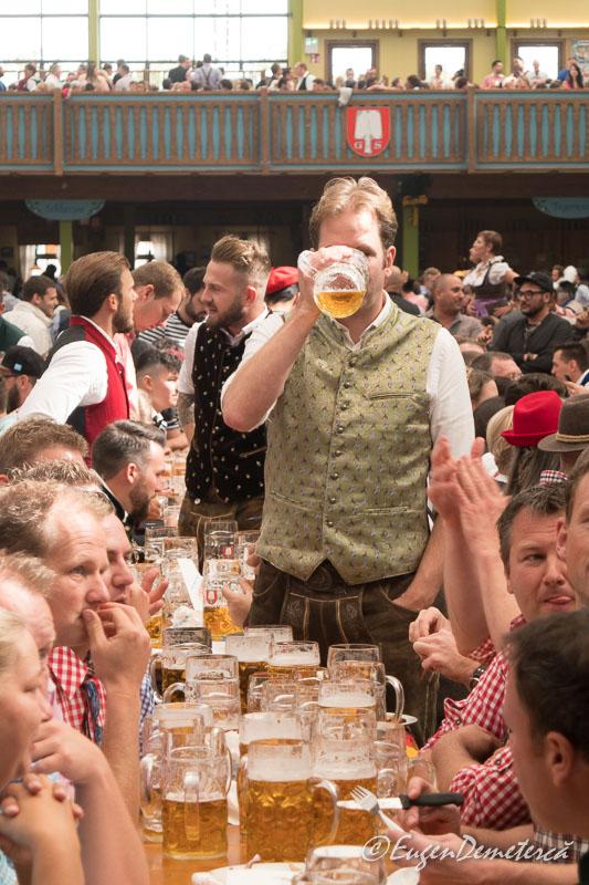 1170639 - Dezmățul de Oktoberfest