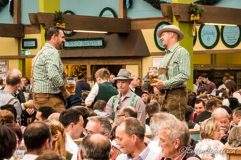 1170661 - Dezmățul de Oktoberfest