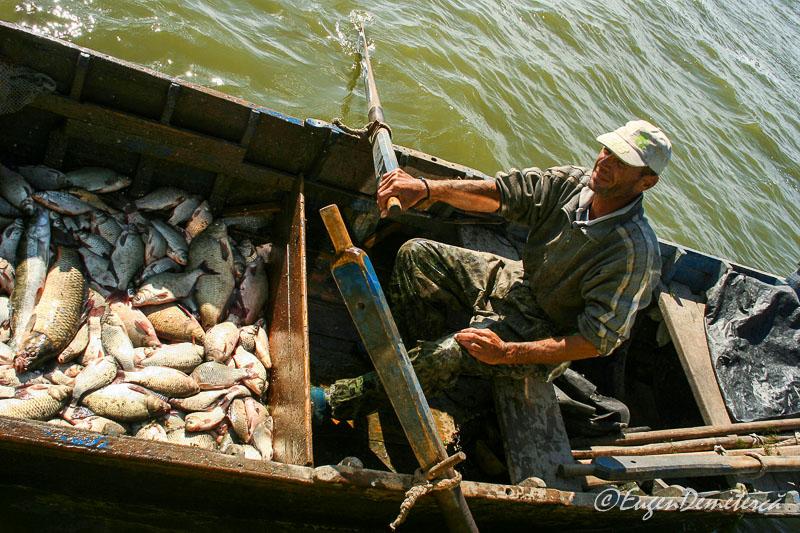 Pescar cu peste in barca pe Dunare