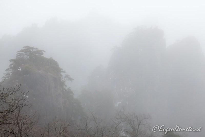 Huangshan pe ceata densa