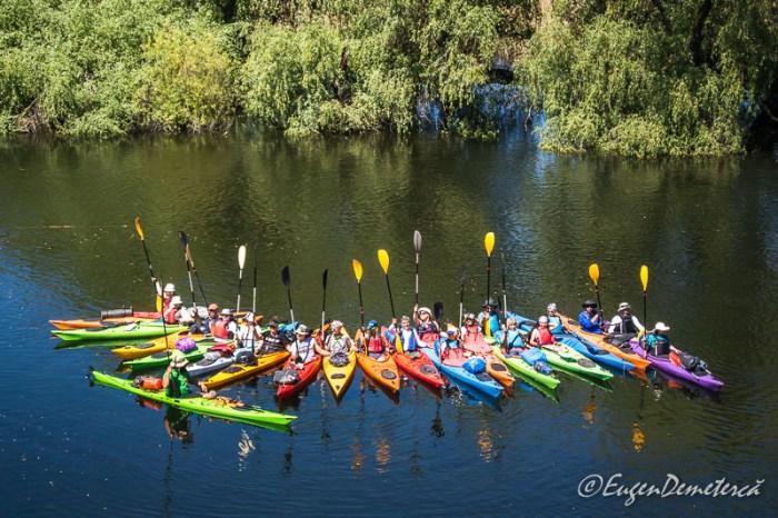Canal in Delta Dunarii plin cu vegetatie