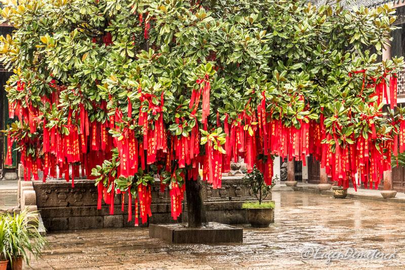 In curtea templului Yuanjin din Zhujiajiao 2