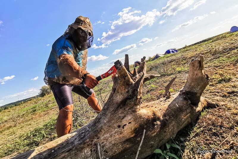 Cosma la taiat lemne